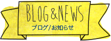 Blog&News